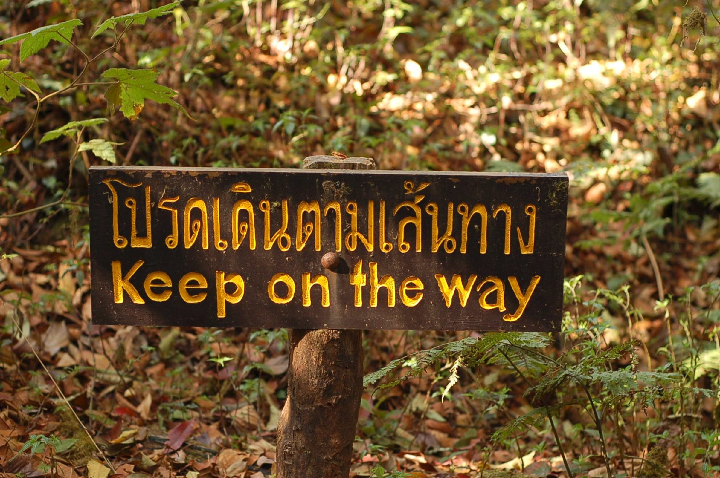 Taoism Admonition - Keep on the Way sign